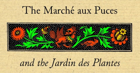 The Marche aux Puces and the Jardin des Plantes
