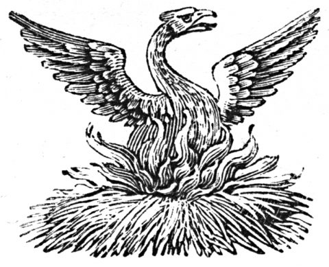 Phoenix 2