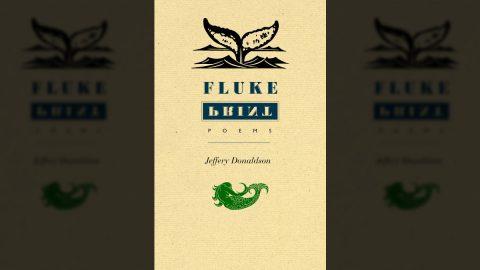 Fluke Print cover