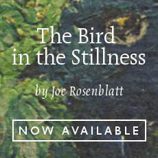 The Bird in the Stillness