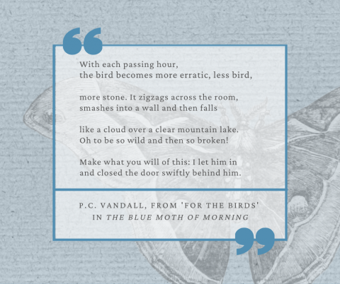 Quote from The Blue Moth of Morning by P. C. Vandall